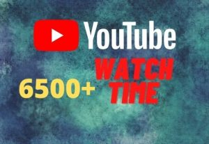 provide you 6500+ YouTube watch time