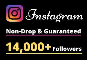 I will Provide 14,000+ Non-Drop & Guaranteed Instagram Followers