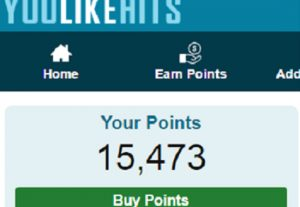 10000 youlikehits points for you for 4$