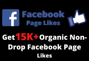 Get 15,000+ Organic Non-Drop Facebook Page Likes