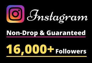 I will Provide 16,000+ Non-Drop & Guaranteed Instagram Followers