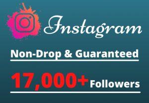 I will Provide 17,000+ Non-Drop & Guaranteed Instagram Followers