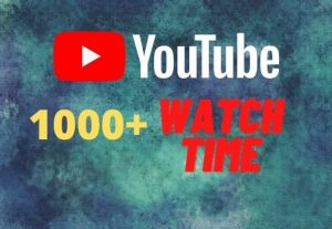 provide you 1000+ YouTube watch time