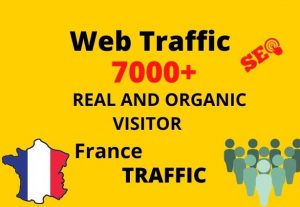 I will provide 7,000+ real or organic and targeted web traffic