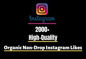 I will Provide 2000+ High-Quality Organic Non-Drop Instagram Likes