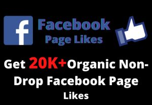 Get 20,000+ Organic Non-Drop Facebook Page Likes