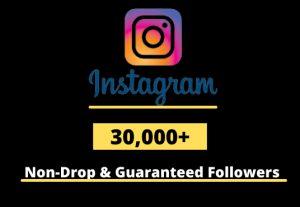 I will Provide 30,000+ Non-Drop & Guaranteed Instagram Followers