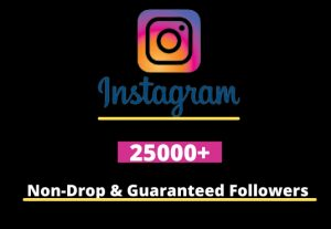 I will Provide 25,000+ Non-Drop & Guaranteed Instagram Followers