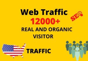 I will provide 12,000+ real or organic and targeted web traffic