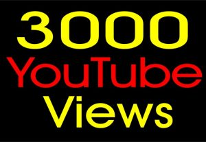 3000+ YOUTUBE VIEWS NON DROP AND 100% ORGANIC SERVICE