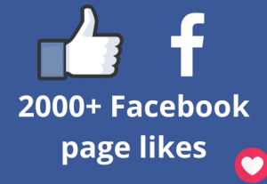I will add 2000+ Facebook page likes