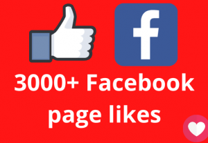 I will add 3000+ Facebook page likes