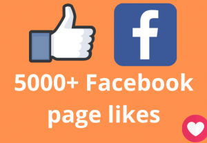 I will add 5000+ Facebook page likes