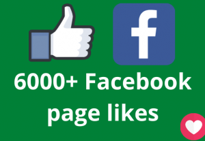 I will add 6000+ Facebook page likes