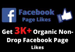 Get 3000+ Organic Non-Drop Facebook Page Likes