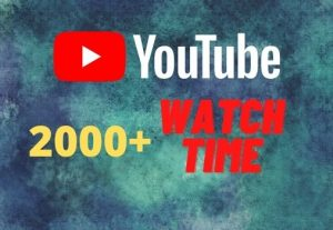 provide you 2000+ YouTube watch time