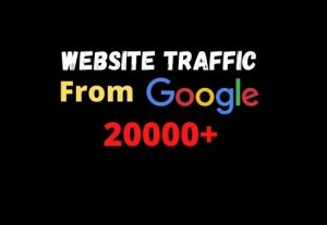 I will provide you 20000+ website traffic from google