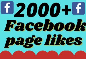 I will add 2000+ real and organic Facebook page likes