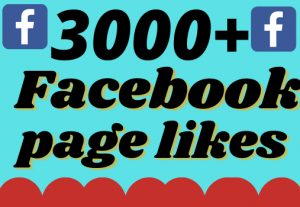 I will add 3000+ real and organic Facebook page likes