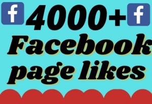 I will add 4000+ real and organic Facebook page likes