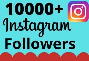 I will add 10000+ real and organic Instagram followers for your business