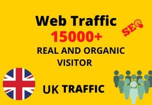 I will provide 15,000+ real or organic and targeted web traffic