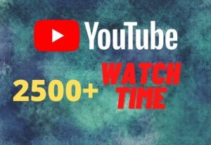 provide you 2500+ YouTube watch time