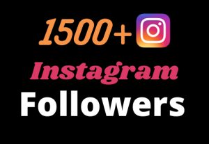Get 1500+ Real and Organic Instagram followers for your business