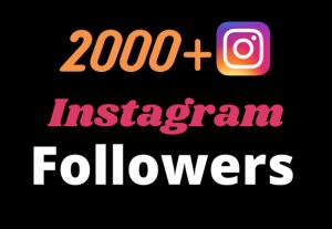 Get 2000+ real and organic Instagram followers for your business