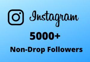 I will Provide 5000+ Non-Drop & Guaranteed Instagram Followers