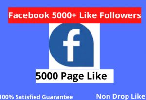 I will 5000+ facebook page like real