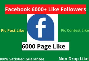 I will facebook Page like and post like 6000+ real no drop