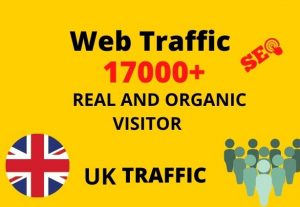 I will provide 17,000+ real or organic and targeted web traffic