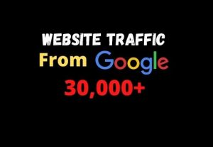 I will provide you 30000+ website traffic from google