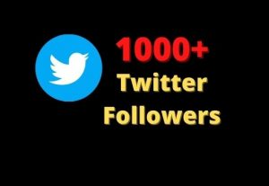 1000+ Twitter Followers Non-Drop And High Quality