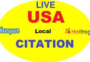 I will do top 300 All country local citations and directory submission for local seo
