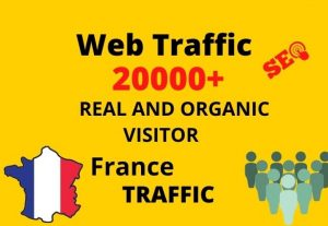 I will provide 20,000+ real or organic and targeted web traffic