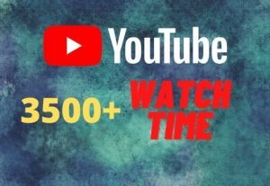 provide you 3500+ YouTube watch time