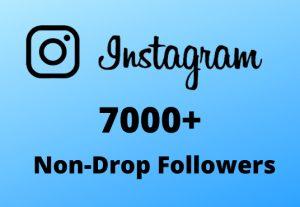 I will Provide 7000+ Non-Drop & Guaranteed Instagram Followers