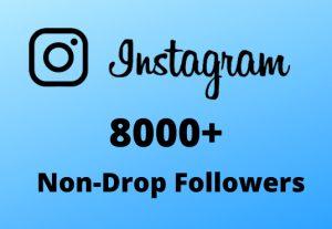 I will Provide 8000+ Non-Drop & Guaranteed Instagram Followers