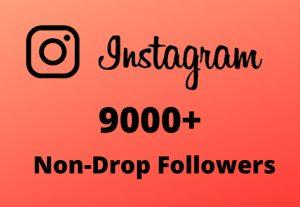 I will Provide 9000+ Non-Drop & Guaranteed Instagram Followers