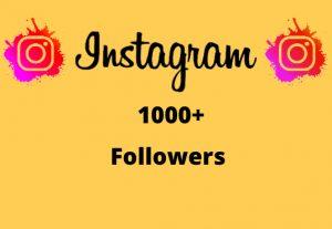 I will Provide 1000+ Non-Drop & Guaranteed Instagram Followers