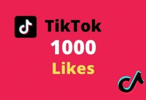I will provide TikTok 1000 likes in your post