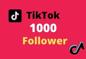 I will provide TikTok 1000 follower