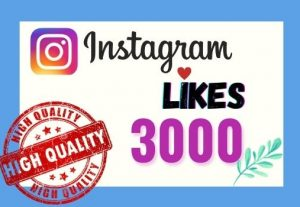 I will provide Instant 3K real likes in your Instagram post