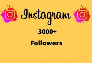 I will Provide 3000+ Non-Drop & Guaranteed Instagram Followers