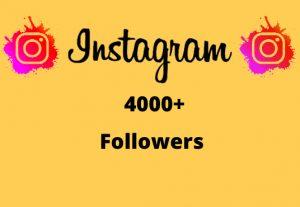 I will Provide 4000+ Non-Drop & Guaranteed Instagram Followers