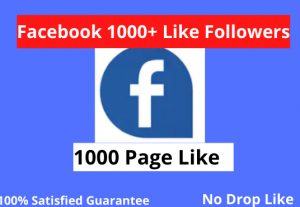 I will 1000+ Facebook page real like