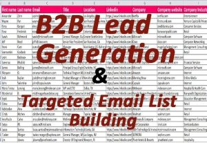 I will do 1000+ b2b lead generation and targeted lead generation