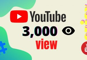 I will provide 3000 Youtube Views High retention and Non Drop Instant Start